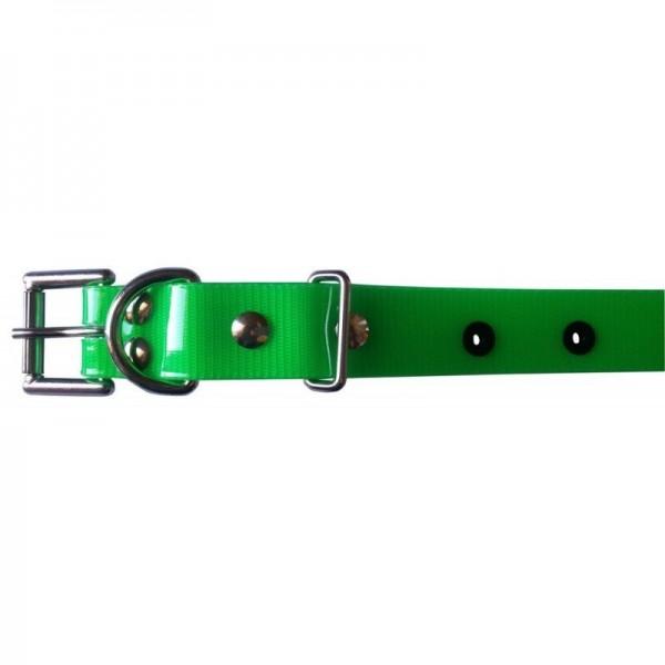 Dogtra Halsband 25mm rot oder grün