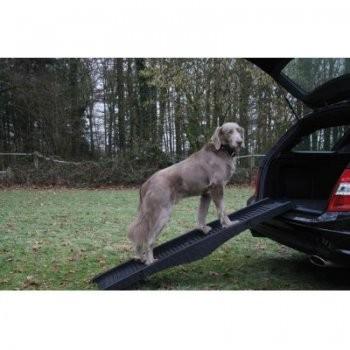 Hunderampe für Hunde bis 60kg