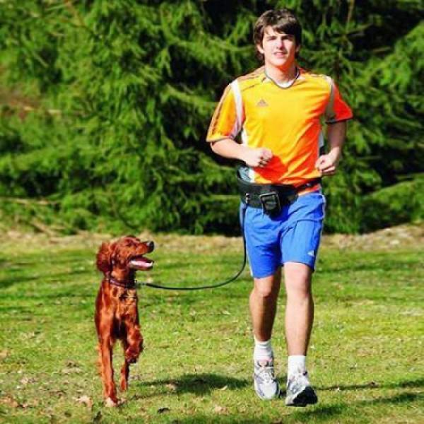 Jogger Hundeleine