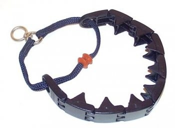 Starmark Pro Training Collar