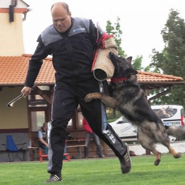 Schutzdienstjacke Competition