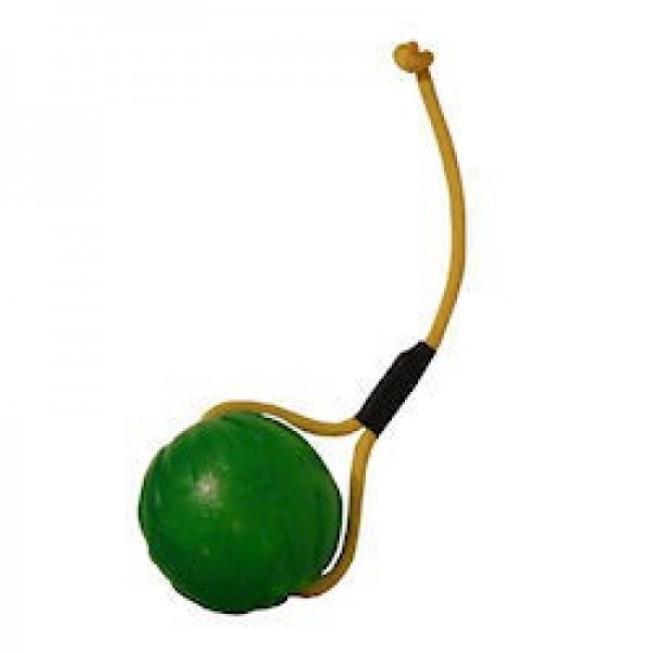 Treat Dispensing Chew Ball mit Schnur mittel
